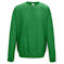 aw0320 kelly green sweatshirt