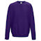 aw0320 purple sweatshirt